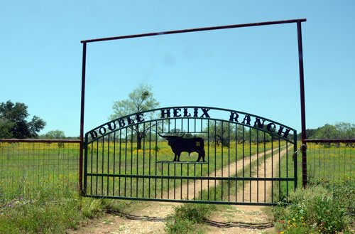 Double Helix Ranch Gate, May 2012